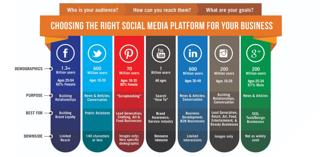 Accion Social Media Statistics